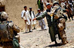 афганвет в санкт-петербурге руководство - фото 4